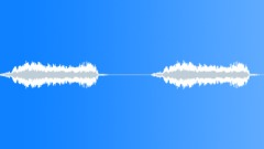 Great Kiskadee 3 - sound effect
