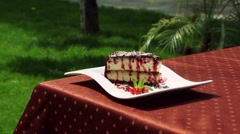 Beautiful And Delicious Blueberry Pie Stock Footage