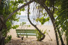 Empty bench and trees on beach Stock Photos