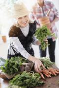 Older Caucasian couple harvesting vegetables from garden Stock Photos