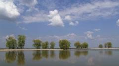 Willows Around Lake - stock footage