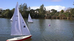 :Remote controlled sailing wooden yachts race in a pond. Stock Footage