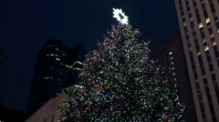 Christmas tree with a crowd of people, New York. - stock footage