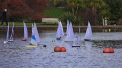 People racing remote controlled sailing wooden yachts in a pond. Stock Footage