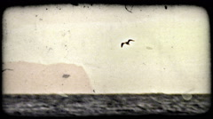 Bird flies over water. Vintage stylized video clip. Stock Footage