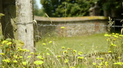 Old stone city wall at the countryside Stock Footage