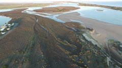 Coorong Right Track Stock Footage