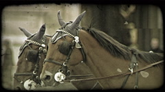Stock Video Footage of Carriage ride 1. Vintage stylized video clip.
