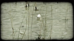 Piece of trash in dingy river. Vintage stylized video clip. Stock Footage