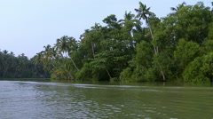 A Shot Of Backwaters In kerala Stock Footage