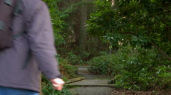 A man walks down a well-tended forest trail - stock footage