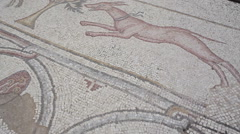 Ancient mosaics of animals in Caesarea, Israel Stock Footage