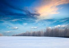 Winter landscape - forest and field covered with snow Stock Photos