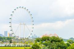 Singapore flyer at singapore Stock Photos