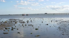 Southend on Sea-Low tide looking out at pier Stock Footage