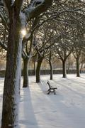 Solitude and Park Bench with Snow Empty Stock Photos