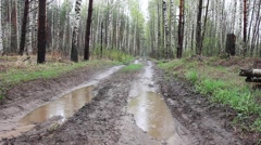 Dirty road in the forest , rainy weather(view from ground level) Stock Footage