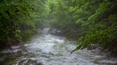 Stock Video Footage of Fast Mountain River Flowing Downhill Among Greenery
