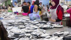 Muslim fishmonger sorting and selling fresh raw fish - stock footage