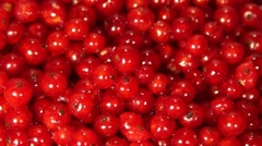 Stock Video Footage of Close up of fresh ripe red currant berries rotating