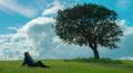 Beautiful brunette female under tree, upset woman sitting alone on green grass Footage