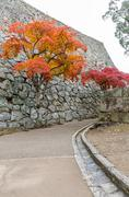 Colorful Autumn Leaf Season in Japan - stock photo