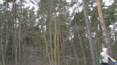 Lots of trees in the roadside while travelling Stock Footage