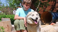 Handsome teen boy sits with husky dog on chain at sunny day Stock Footage