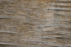 Vintage wooden faded aged board with cracks, checks and defects - stock photo