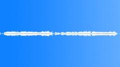 Animals_Bumble Bee_Bombus hypnorum_12 Sound Effect