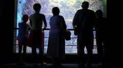 Back of adults and children looking at fishes in aquarium Stock Footage