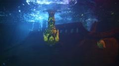 Mermaid swims at Oceanarium Sochi Discovery World Aquarium Stock Footage