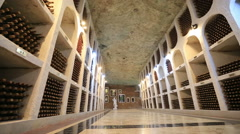 Professional wine cellar Stock Footage