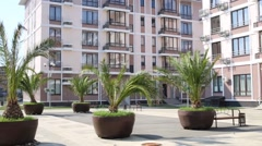 Palms in pots near hotel complex at summer windy day Stock Footage
