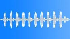 Bird,Woodpecker 1 Sound Effect