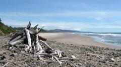 Driftwood Pile At Vast Oregon Beach 1 Stock Footage