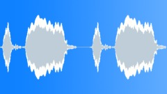 Owl 2 Sound Effect