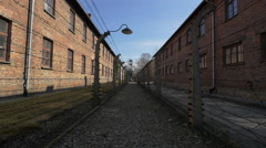 Barbed wire fence and lamps at Auschwitz Stock Footage