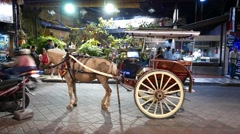 Tonga, horse drawn carriage, standing at night Balinese street Stock Footage