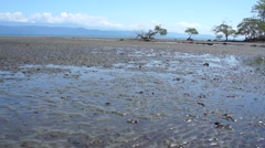 Costa Rica beach during the low tide - stock footage
