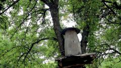 Old deck with a roof for beekeeping. The ancient methods of beekeeping - stock footage