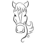 Horse Head Drawing Stock Illustration