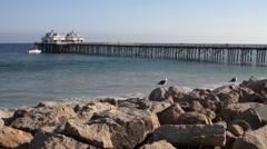 Malibu Pier with Birds Stock Footage