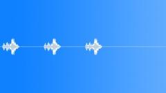 Bird, Thrush 8 Sound Effect