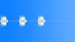 Bird, Warbler 16 - sound effect