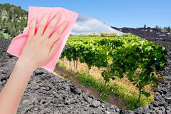 Hand deletes lava on Etna volcano slope by pink cloth Stock Photos
