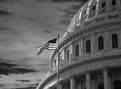 Stock Photo of US Capitol Dome Black and White