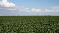 Kansas / Oklahoma - Landscape 03 Stock Footage