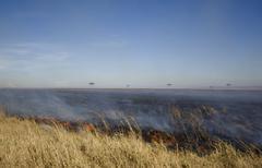 Fire at Masai mara Kenya - stock photo