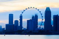 Singapore flyer - stock photo